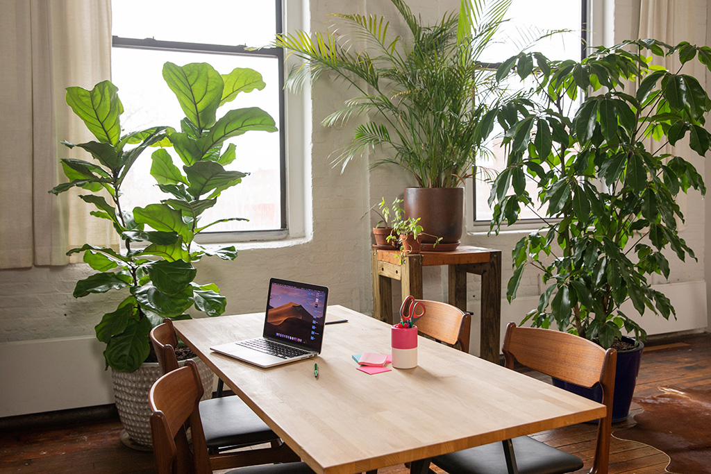 healthy office